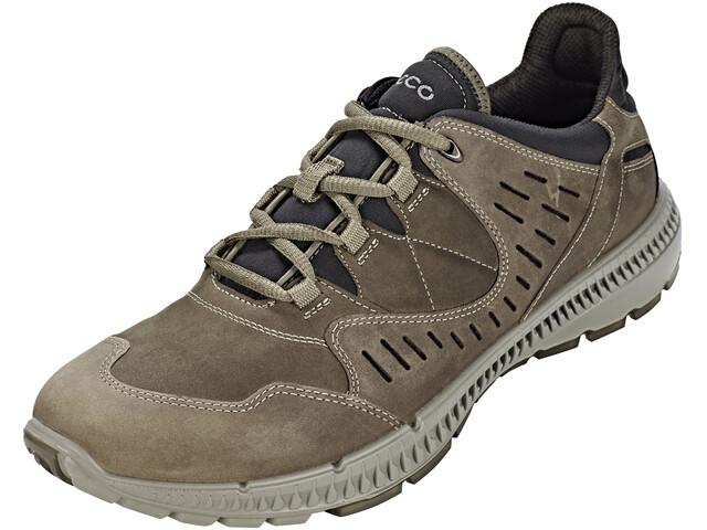 ECCO Terrawalk Shoes Men Tarmac/Tarmac